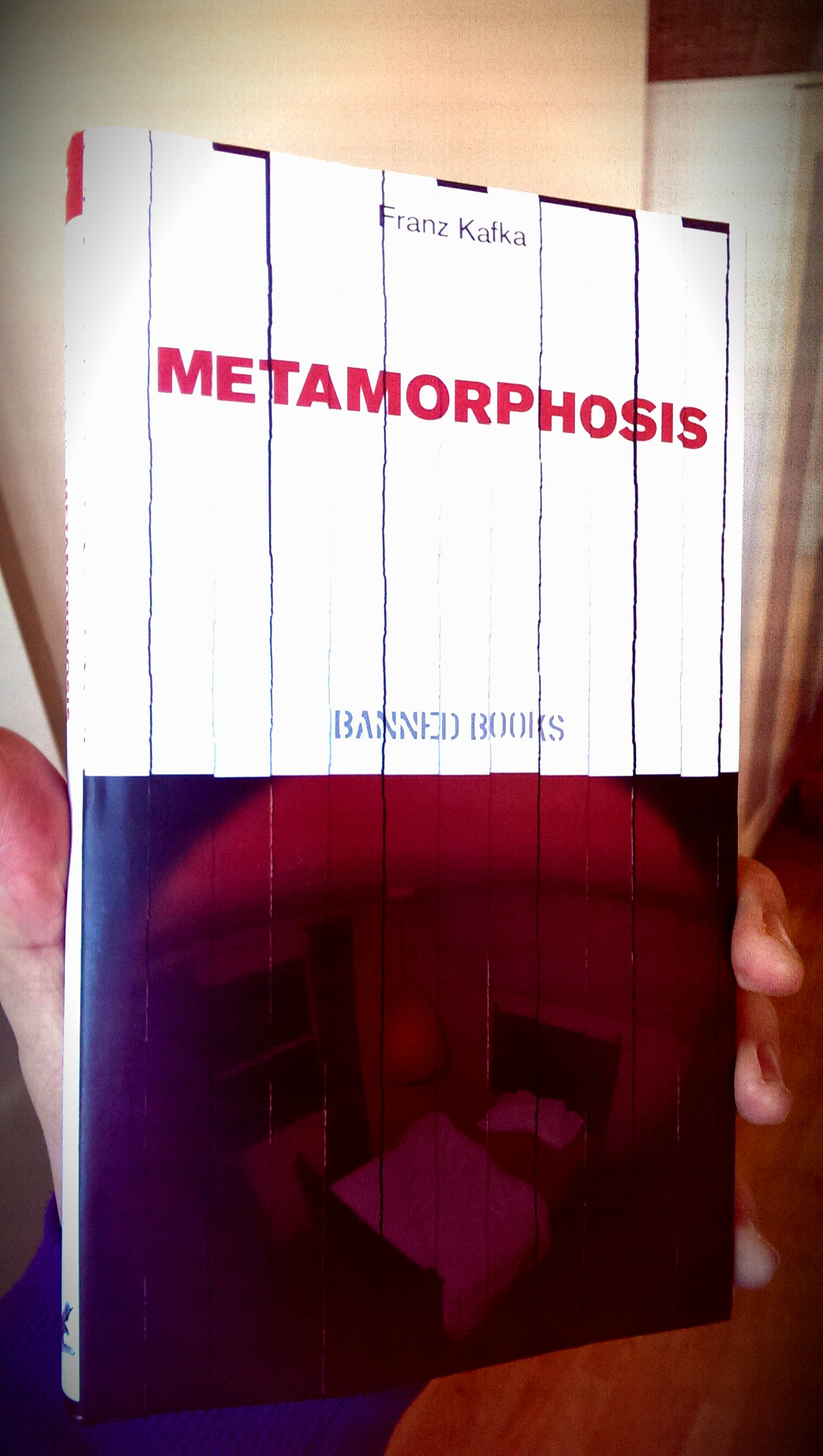 the metamorphosis book review Directed by chris swanton with eirik bar, janet henfrey, chloe howman, maureen lipman gregor samsa, a traveling salesman, wakes up in his bed to find himself transformed into a large insect after the metamorphosis, he becomes confined to his room and neglected by his family.