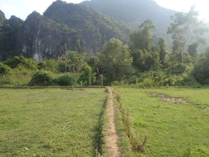 Rice paddy dike in Vang Vieng